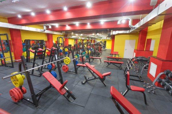 Фитнес клуб в южном округе москвы ночной клуб для лесбиянок