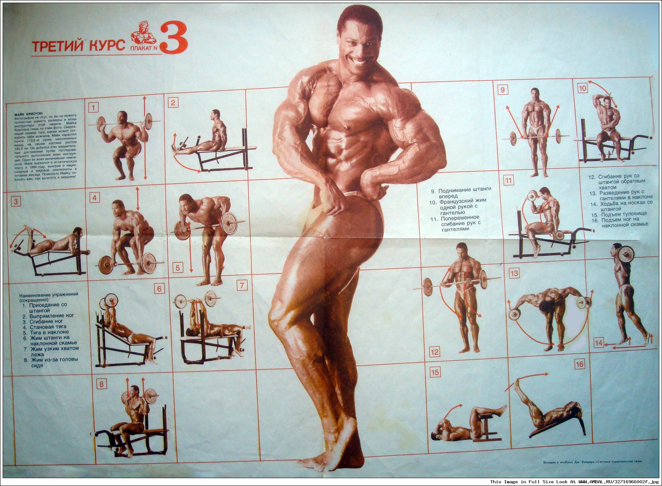Can also joe weider bodybuilding training system pdf prominent help