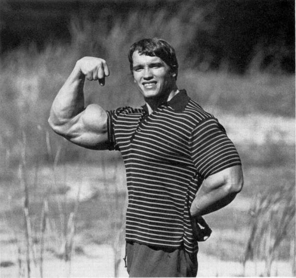 Arnold swaggernager