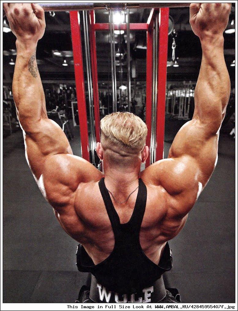 Как сделать тренажер на широчайшие мышцы спины