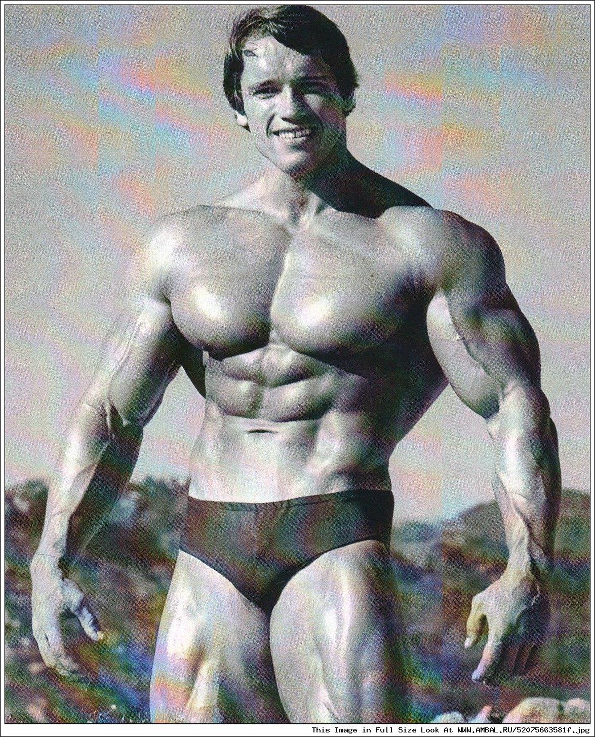 Arnold swarchenegger nude erotic women